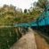A Perfect Guide To The Nine Arch Bridge In Ella