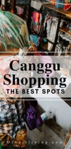 Canggu Shopping