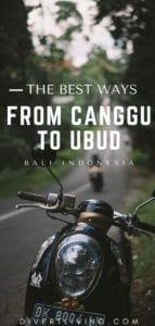 Canggu to Ubud